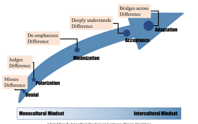 ASSESSMENT OPPORTUNITY: InterculturalCompetence and Undoing Racism