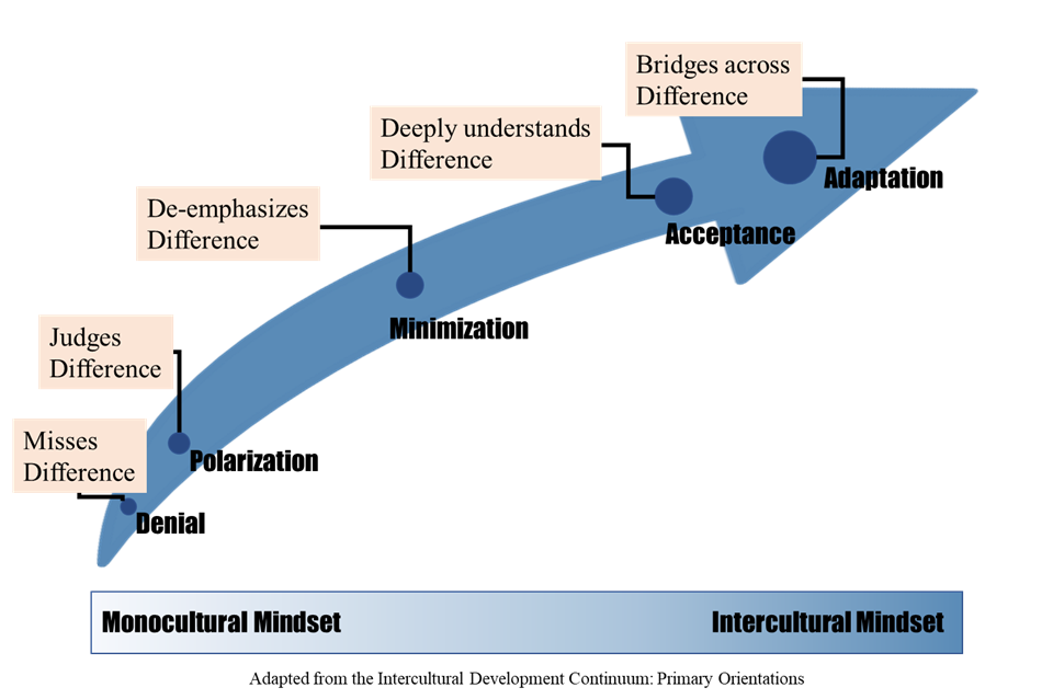ASSESSMENT OPPORTUNITY: Intercultural Competence and Undoing Racism